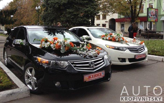 Аренда Honda Accord на свадьбу Кропивницкий