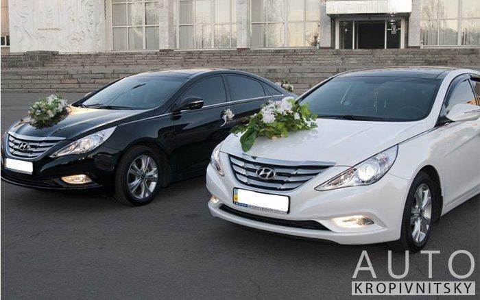 Аренда Hyundai Sonata на свадьбу Кропивницкий